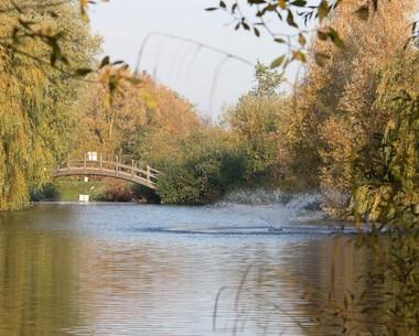 Freshwater fishing lakes at Thorpe Park