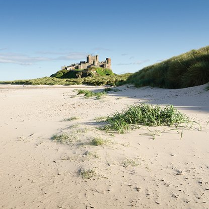 region northumberland places to visit bamburgh castle